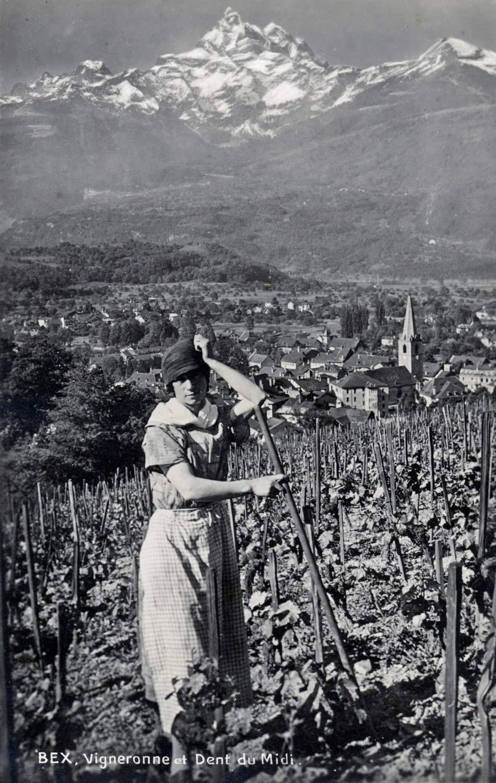 Bex. Vigneronne et Dent du Midi. © Jämes Perret, Photo Art. Lausanne. Carte datée du 3 juin 1930