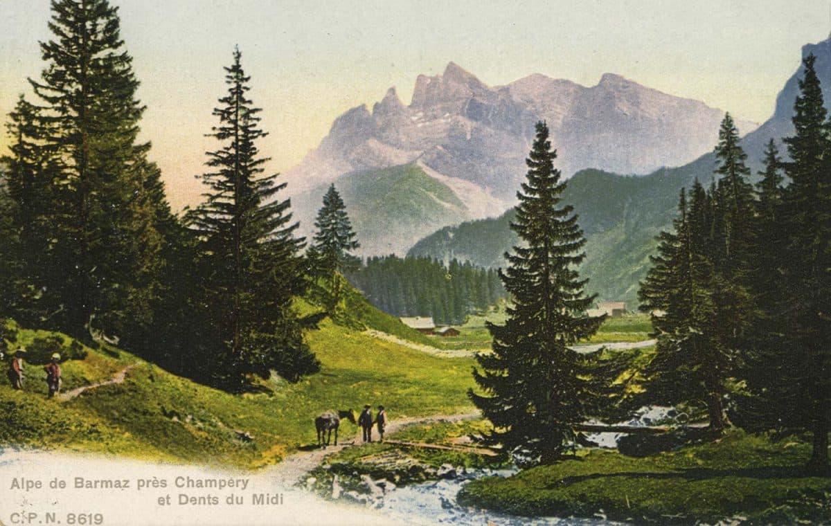 Alpe de Barmaz près Champéry et Dents du Midi © C.P.N.