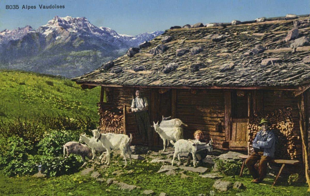 Alpes vaudoises © Phototypie Co., Neuchâtel, carte datée de 1926