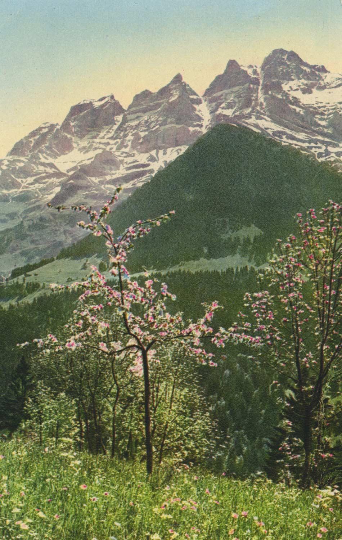 Carte postale. Les Dents du Midi depuis Champéry