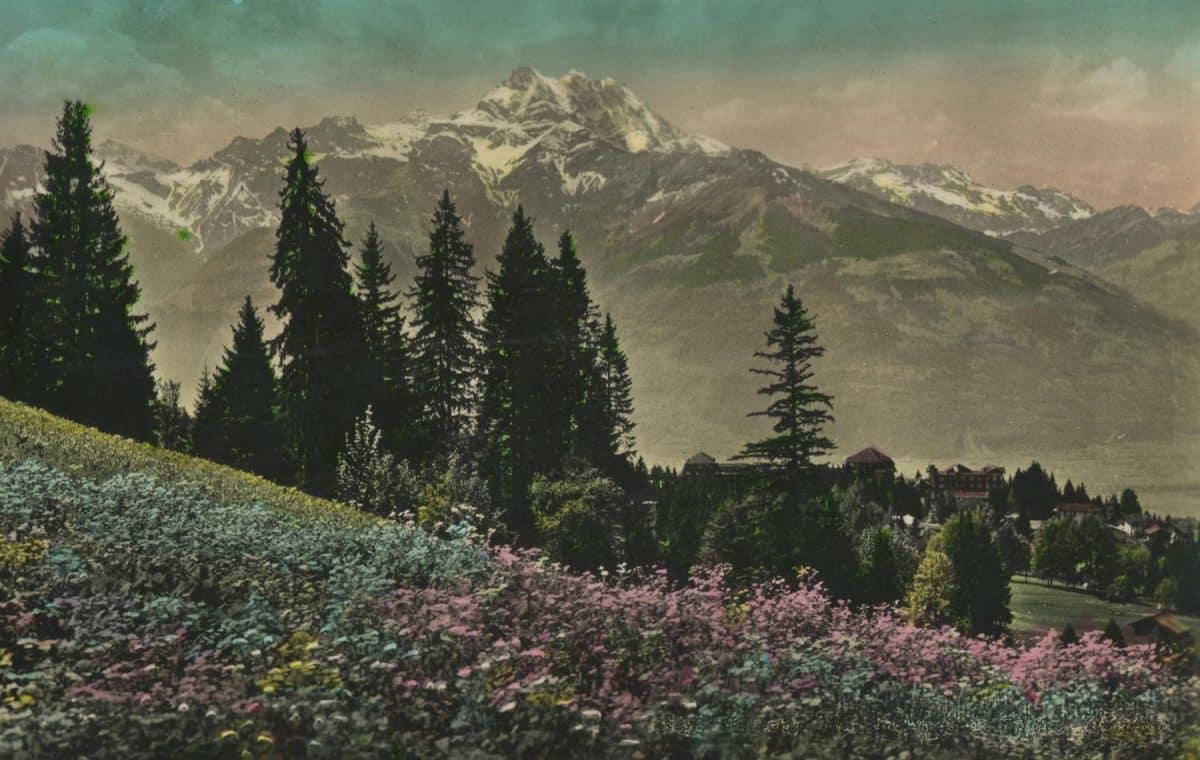 Paysage aux environs de Villars-Chesières © Phot. Edit. O. Sartori, Lausanne