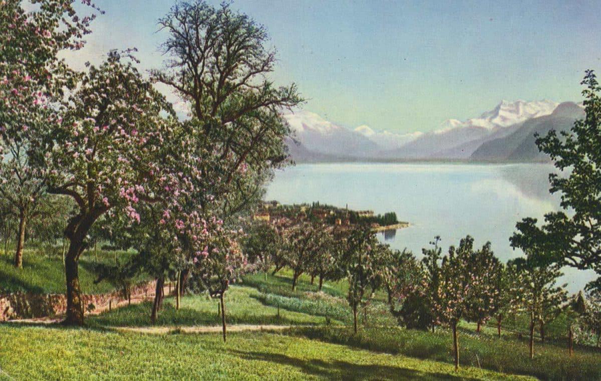 Vevey et les Dents du Midi © Edition et Photo Kern, Lausanne, carte datée de 1939