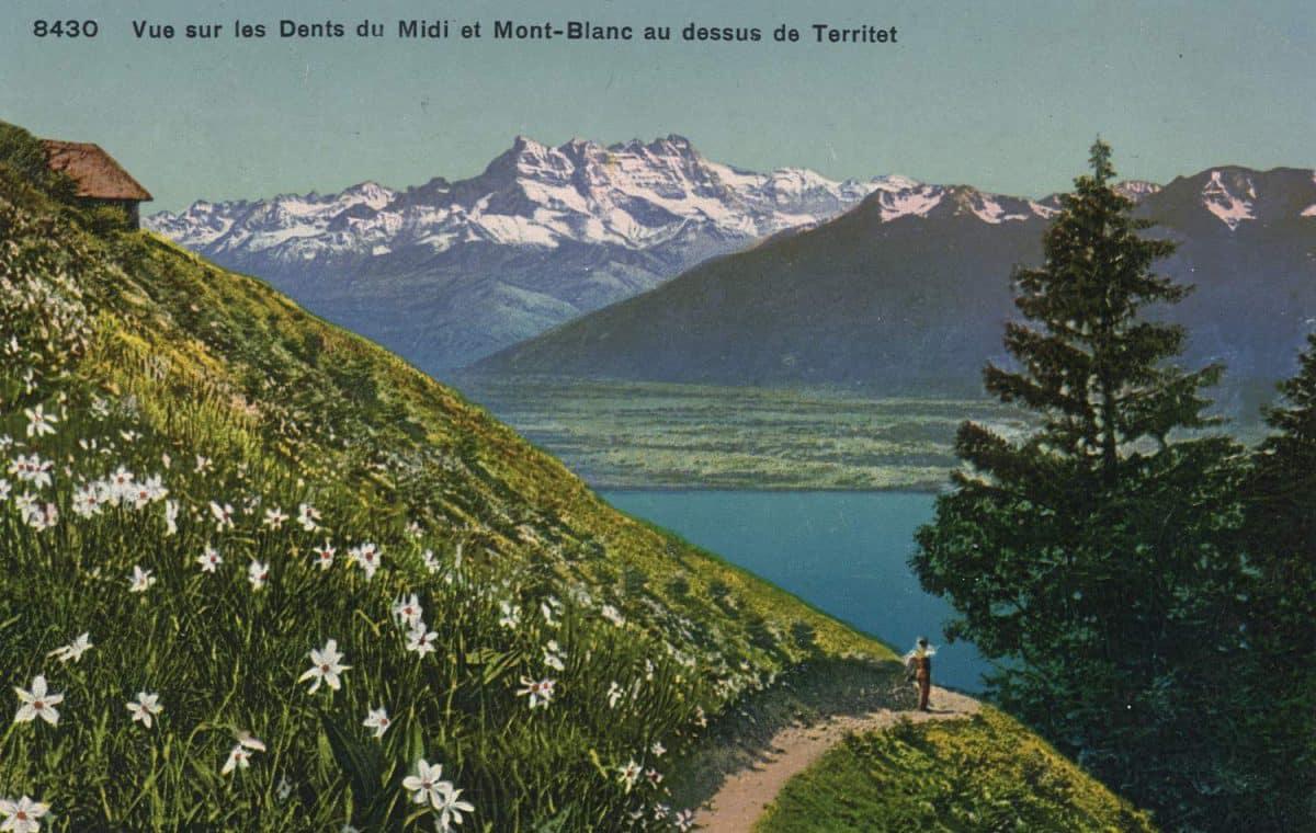 Vue sur les Dents du Midi et Mont-Blanc au-dessus de Territet © Phototypie Co., Neuchâtel