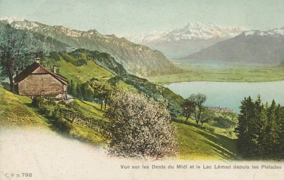 Vue sur les Dents du Midi et le Lac Léman depuis les Pléïades © C.P.N.