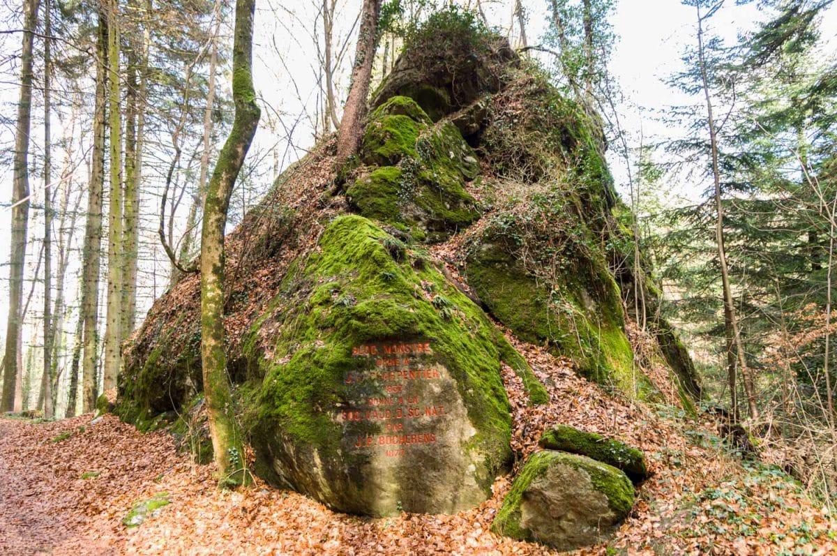 Le Bloc Monstre dans la forêt à Bex