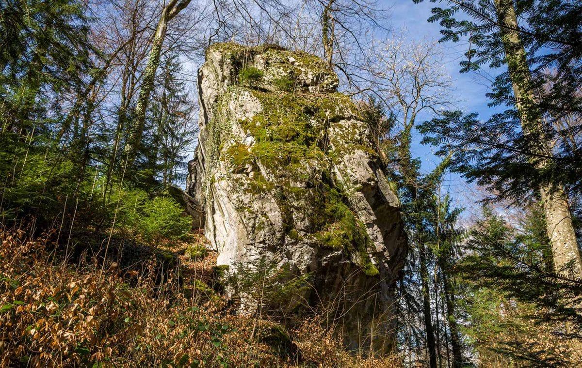 La Pierre Besse dans les bois à Bex