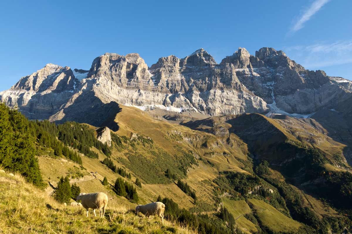Les couches géologiques sont bien visibles sur cette photographie des Dents du Midi. © Fabrice Ducrest