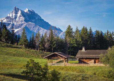 L'imposante masse des Dents-du-Midi prise depuis l'Alpe-des-Chaux proche de la Barboleuse