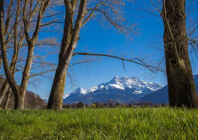 Les Dents-du-Midi depuis la plaine du Rhône