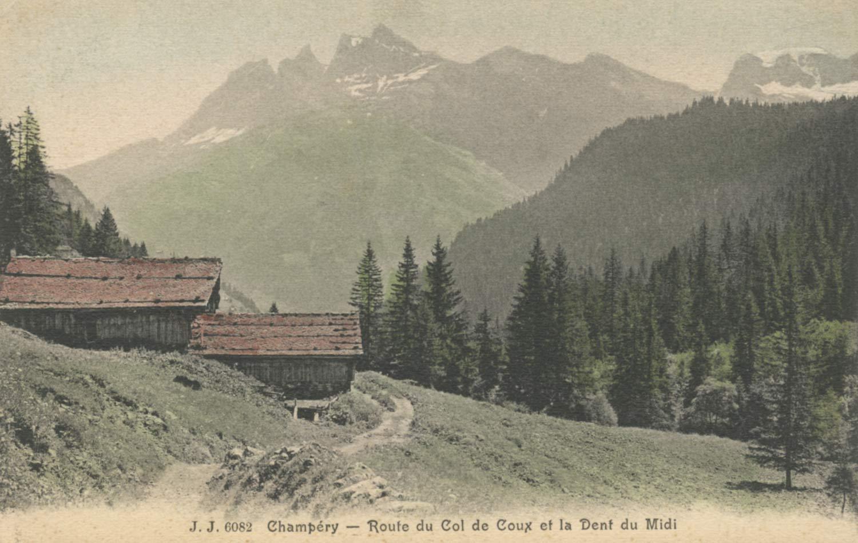 Champéry - Route du Col de Coux et la Dent du Midi © Phot. Editeurs, Genève, carte datée de 1909