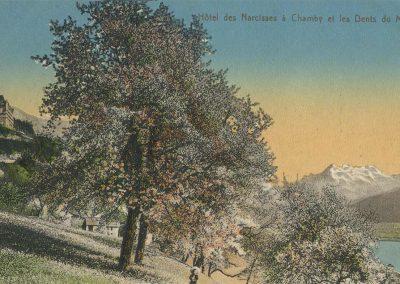 Hôtel des Narcisses à Chamby et les Dents du Midi. © Edit. Art. S.A. Schnegg, Lausanne, carte datée de 1915