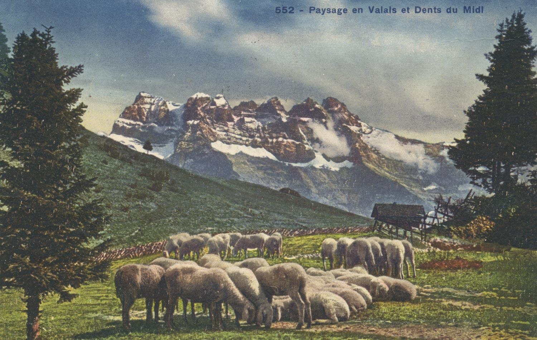 Paysage en Valais et Dents du Midi, © Société Graphique Neuchâtel, carte datée de 1926