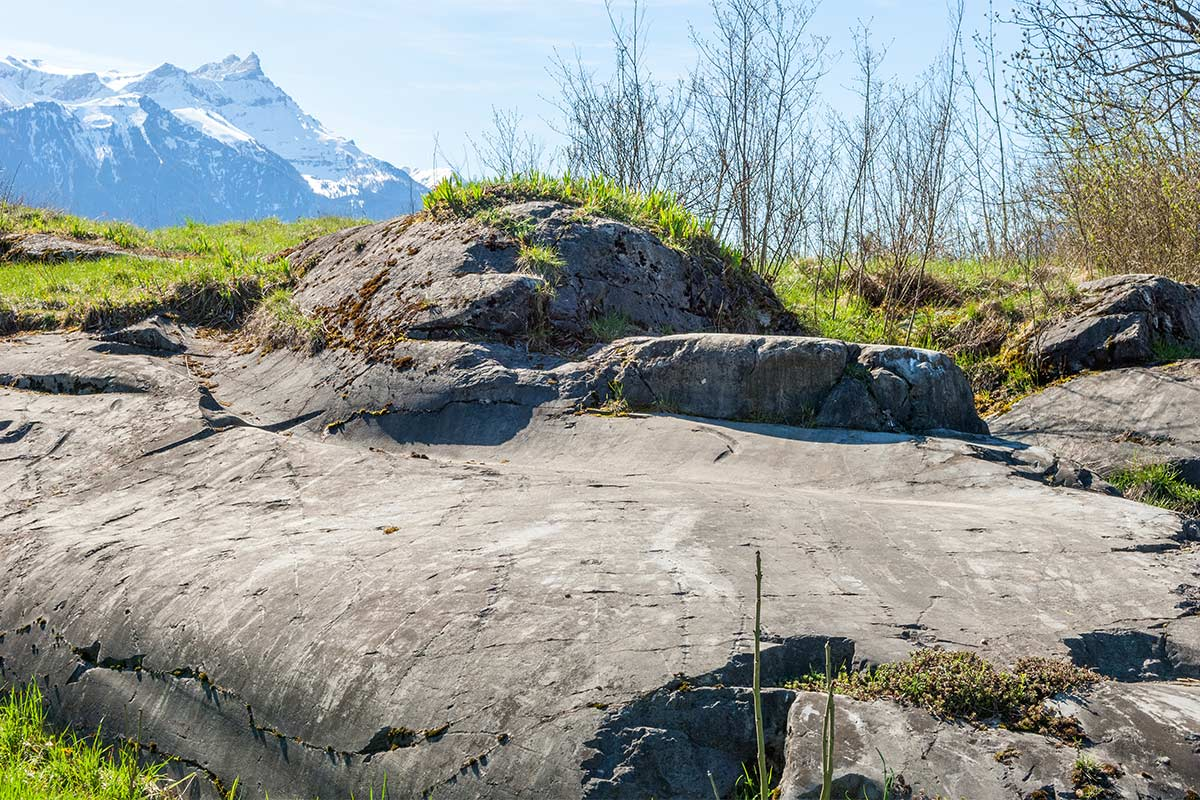 Les roches moutonnées de la colline de Saint-Triphon