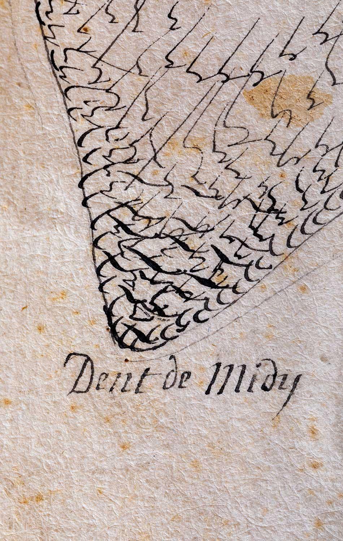 Détail d'un plan géométrique de la montagne de Salanfe en 1772. Cote PLA 500_0_0_3, © Archives de l'Abbaye de Saint-Maurice