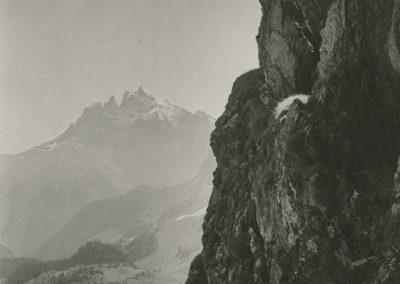 Dents du Midi - Pas de Beda. © Fonds Boissonnas, Bibliothèque de Genève