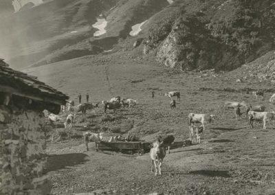 Val d'Illiez - Chalin. © Fonds Boissonnas, Bibliothèque de Genève