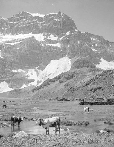 Le plateau de Salanfe et ses chalets devant la Tour Sallière. Photographie datée du 31 juillet 1922. Plaque de verre 13 x 18cm. © Fonds Boissonnas, Bibliothèque de Genève