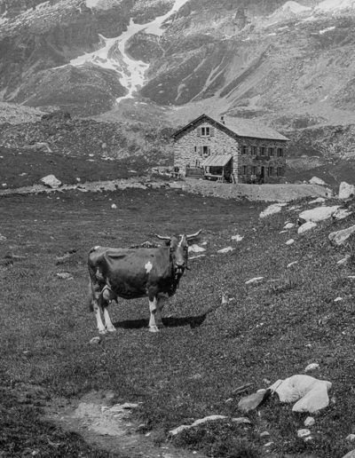 À Salanfe, 1899. Archives de la famille de Louguinine, montagnes n°1. Source : Section des Diablerets du Club Alpin Suisse